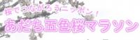あだち五色桜マラソン